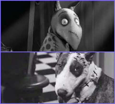 Frankenweenies