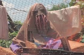 alieno in alive in joburg
